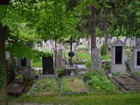 ホテル裏の墓地